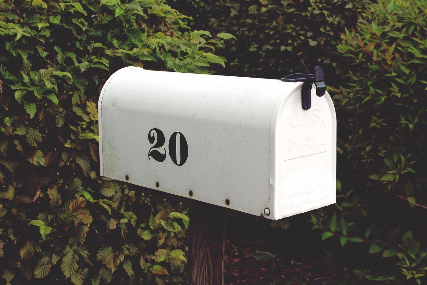 La estrategia y organización de una newsletter B2B